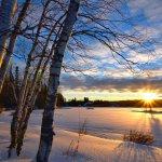 8. Winter3